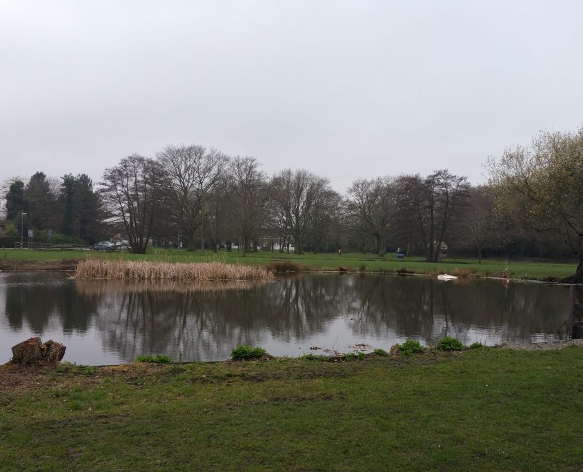 Yateley Green Pond by Gordon Young